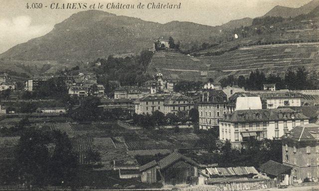 Les vignes avant le Collège Vinet