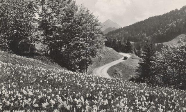 Route des Monts – Disparition de voiture