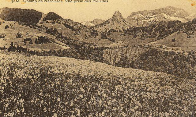 Ravins de Saumont – Vue depuis Les Pléïades